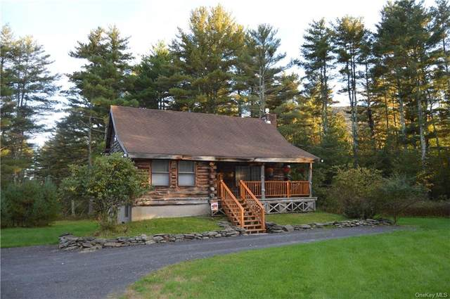 4561 State Route 212, Willow, NY 12495 (MLS #H6149264) :: Goldstar Premier Properties