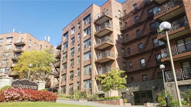 119 S Highland Avenue 4K, Ossining, NY 10562 (MLS #H6149456) :: Cronin & Company Real Estate