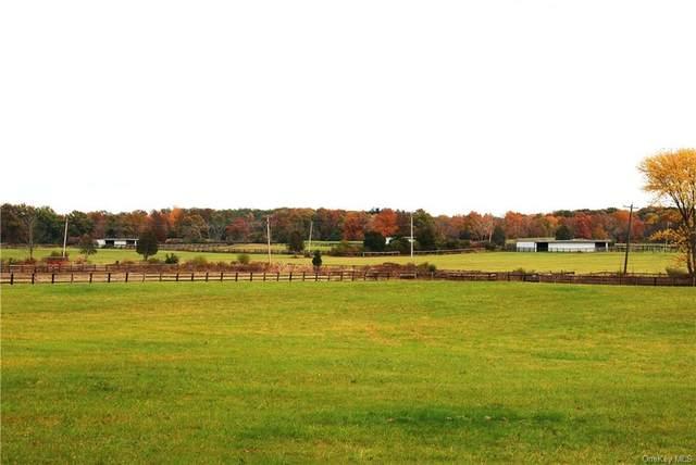 737 Woods Road, Germantown, NY 12526 (MLS #H6149464) :: Cronin & Company Real Estate