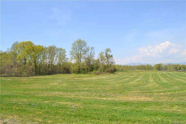 3591 Route 9G, Germantown, NY 12526 (MLS #H6149472) :: Cronin & Company Real Estate