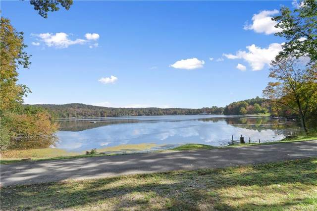 18 Mcdonnells Lane, Hopewell Junction, NY 12533 (MLS #H6149492) :: The Home Team