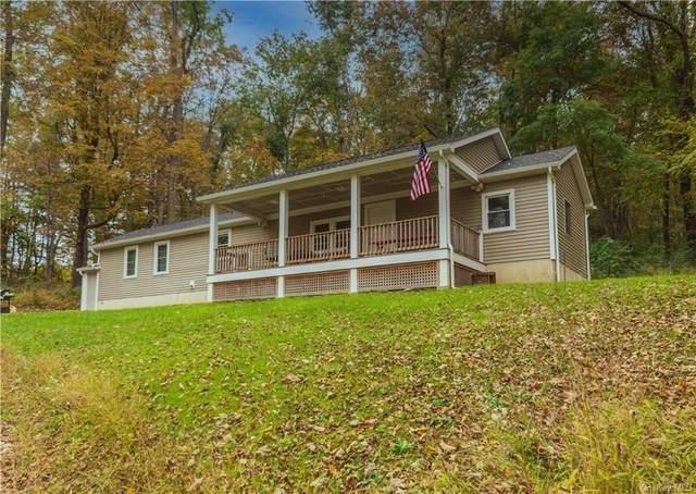 239 Holsapple Road, Dover Plains, NY 12522 (MLS #H6149498) :: Cronin & Company Real Estate