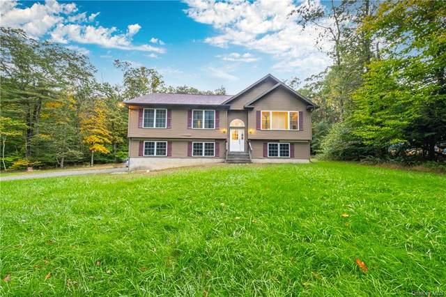 223 Nashopa Road, Bloomingburg, NY 12721 (MLS #H6149529) :: Cronin & Company Real Estate