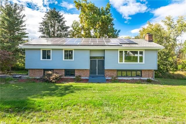 301 Wildwood Drive, Wappingers Falls, NY 12590 (MLS #H6149606) :: Goldstar Premier Properties