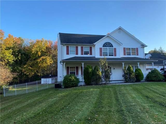 19 Woodridge Drive, Chester, NY 10918 (MLS #H6149613) :: Nicole Burke, MBA | Charles Rutenberg Realty