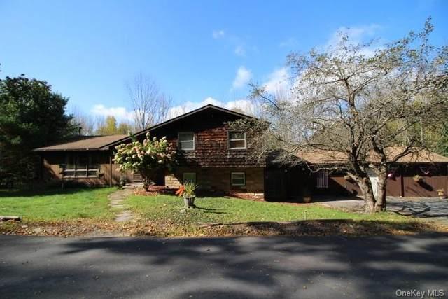 10 Hanofee Drive W, Liberty, NY 12754 (MLS #H6149643) :: Mark Boyland Real Estate Team