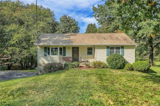 16 Hamilton Drive, Hopewell Junction, NY 12533 (MLS #H6149700) :: Signature Premier Properties