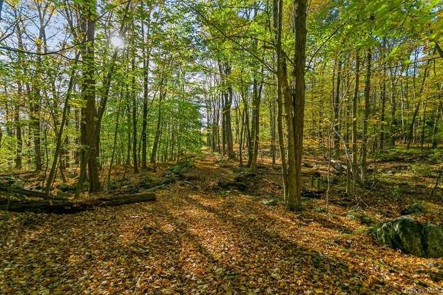 70 Perkins Road, Cold Spring, NY 10516 (MLS #H6149705) :: The Home Team