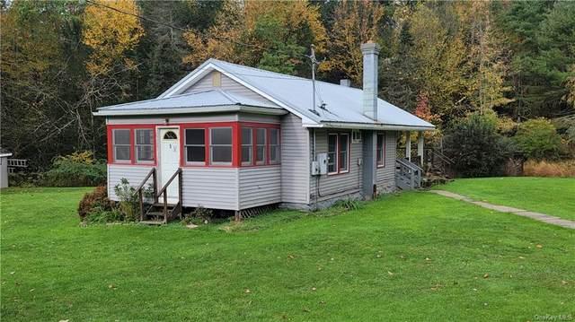 5 Buddenhagen Road, Narrowsburg, NY 12764 (MLS #H6149723) :: Cronin & Company Real Estate