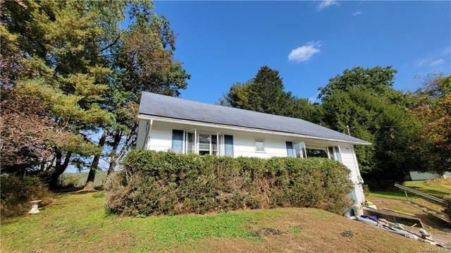 85 School Street, Narrowsburg, NY 12764 (MLS #H6149747) :: Cronin & Company Real Estate