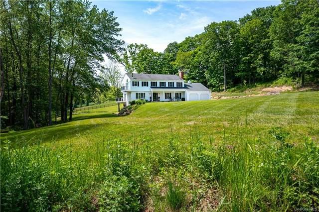 792 N Quaker Hill Road, Pawling, NY 12564 (MLS #H6149756) :: Cronin & Company Real Estate