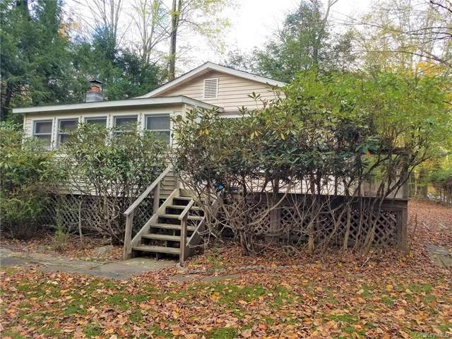 2 W Oakland Drive, Smallwood, NY 12778 (MLS #H6149843) :: The Clement, Brooks & Safier Team