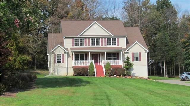 39 Pine Street, Poughquag, NY 12570 (MLS #H6149851) :: Carollo Real Estate
