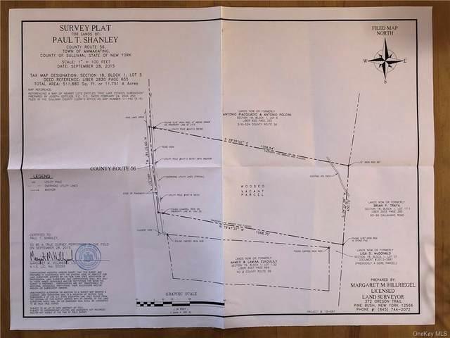 County Route 56, Wurtsboro, NY 12790 (MLS #H6149857) :: Barbara Carter Team
