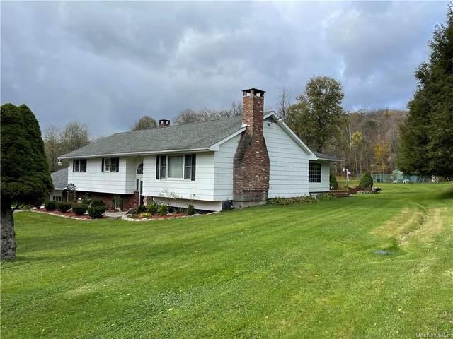 661 Debruce Road, Livingston Manor, NY 12758 (MLS #H6149858) :: Cronin & Company Real Estate