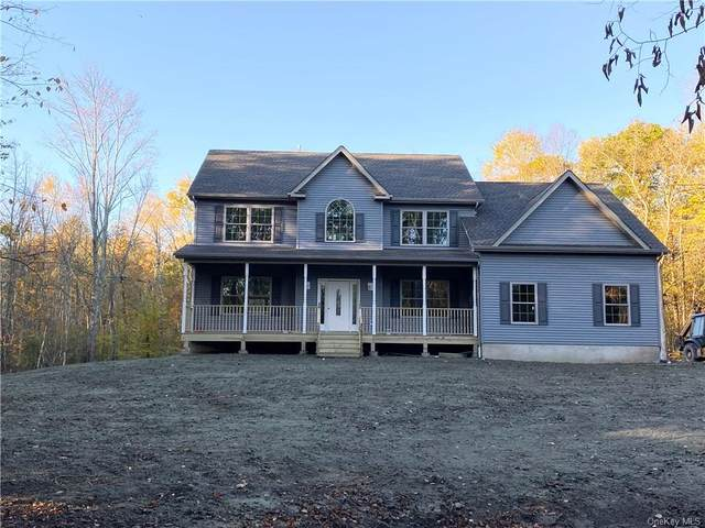 2501 County Route 1, Port Jervis, NY 12771 (MLS #H6149891) :: Goldstar Premier Properties