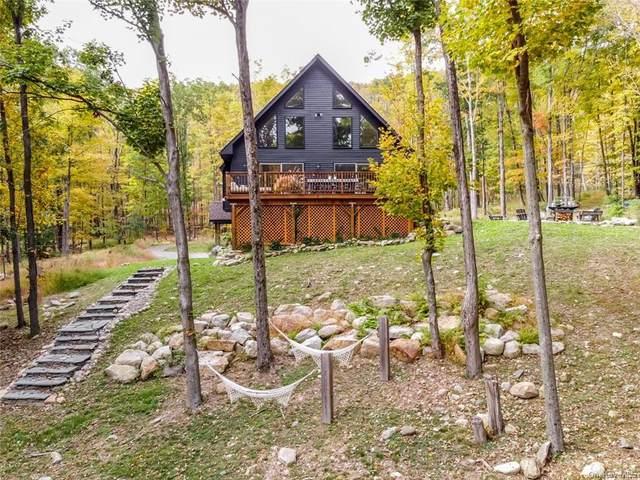 858 Roosa Gap Road, Wurtsboro, NY 12790 (MLS #H6149955) :: Cronin & Company Real Estate