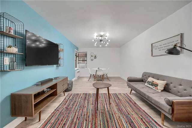 60 Locust Avenue 414A, New Rochelle, NY 10801 (MLS #H6149989) :: Carollo Real Estate