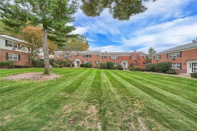 7 Lenox Court #1010, Suffern, NY 10901 (MLS #H6150011) :: Cronin & Company Real Estate