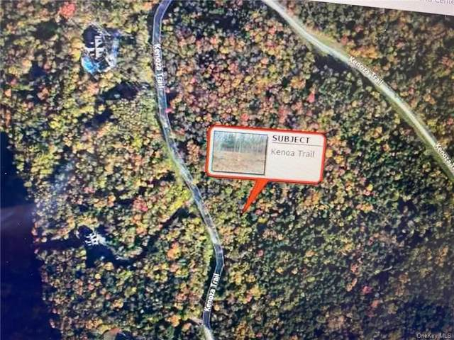 lot 30 Kenoza Trail, Callicoon, NY 12750 (MLS #H6150022) :: Carollo Real Estate