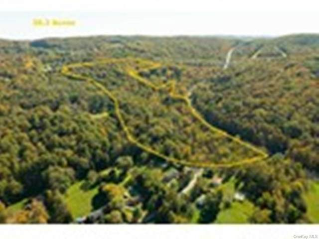 20 Stormville Mountain Road, Stormville, NY 12582 (MLS #H6150032) :: Cronin & Company Real Estate