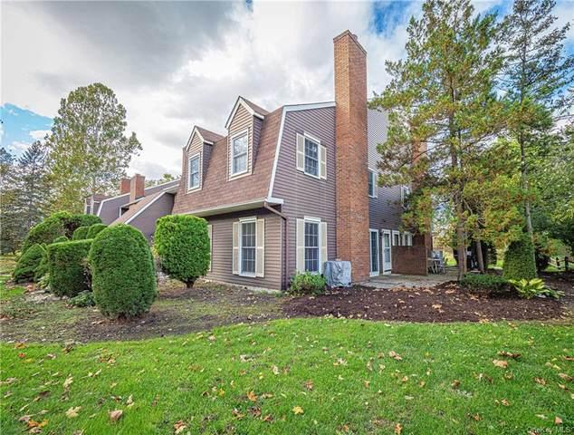 96 Homestead Village Drive, Warwick, NY 10990 (MLS #H6150035) :: RE/MAX RoNIN