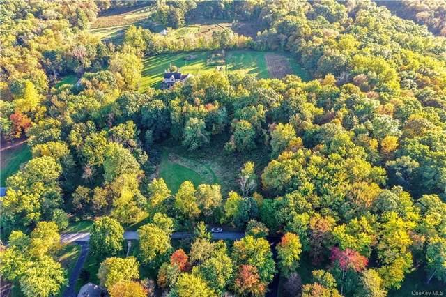 Mountainview Ave Lot 2 Avenue, Wallkill, NY 12589 (MLS #H6150071) :: Carollo Real Estate