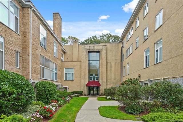 520 Ashford Avenue #24, Ardsley, NY 10502 (MLS #H6150078) :: Signature Premier Properties