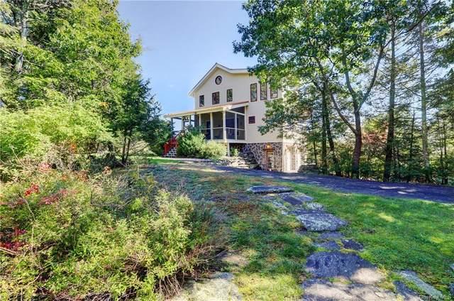 21 Ori's View Drive, Saugerties, NY 12477 (MLS #H6150147) :: Cronin & Company Real Estate