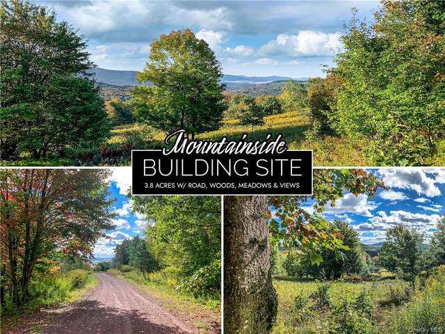6 Castle Mountain Road, Call Listing Agent, NY 12167 (MLS #H6150164) :: Signature Premier Properties