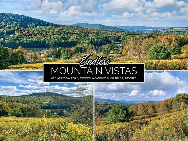 7 Castle Mountain Road, Call Listing Agent, NY 12167 (MLS #H6150167) :: Signature Premier Properties
