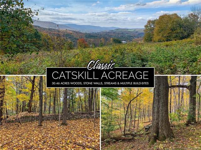 8 State Hwy 10, Call Listing Agent, NY 12167 (MLS #H6150173) :: Signature Premier Properties