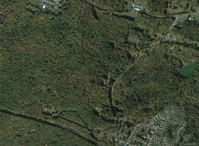 128 & 134 Rosemond Road, Woodridge, NY 12789 (MLS #H6150176) :: Cronin & Company Real Estate