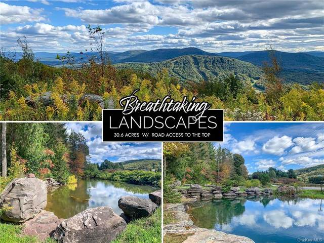 11A Castle Mountain Road, Call Listing Agent, NY 12167 (MLS #H6150180) :: Signature Premier Properties