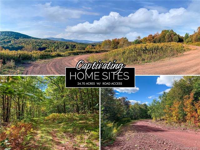 11B Castle Mountain Road, Call Listing Agent, NY 12167 (MLS #H6150182) :: Signature Premier Properties