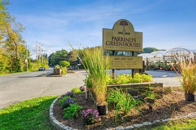 178 Charles Colman Boulevard, Pawling, NY 12564 (MLS #H6150248) :: Cronin & Company Real Estate