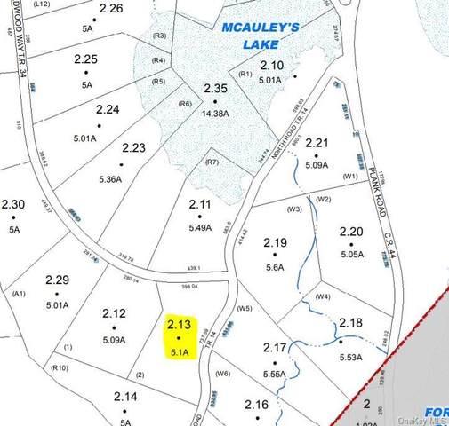 W North Road, Forestburgh, NY 12777 (MLS #H6150273) :: The McGovern Caplicki Team