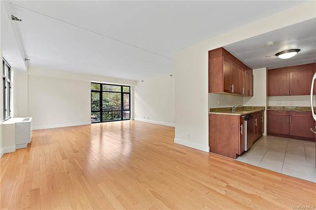 3536 Cambridge Avenue 5F, Bronx, NY 10463 (MLS #H6150336) :: Cronin & Company Real Estate