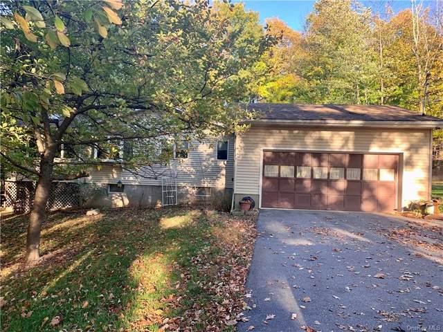 100 Sleepy Valley Road, Warwick, NY 10990 (MLS #H6150410) :: Mark Boyland Real Estate Team