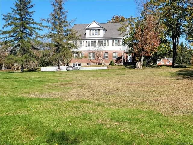 464 Cold Spring Road, Monticello, NY 12701 (MLS #H6150436) :: Cronin & Company Real Estate