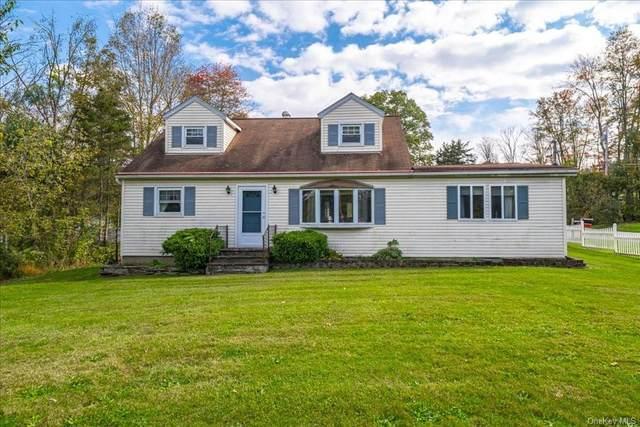 1 Enderkill Drive, Staatsburg, NY 12580 (MLS #H6150475) :: Cronin & Company Real Estate