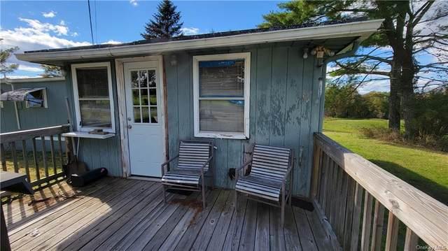 434 Gables Road, Narrowsburg, NY 12764 (MLS #H6150535) :: Cronin & Company Real Estate