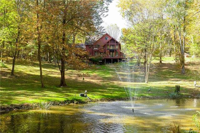 60 Hortontown Hill Road, Hopewell Junction, NY 12533 (MLS #H6150665) :: Goldstar Premier Properties