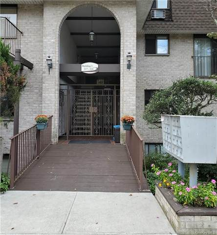 222 Kemeys Cove 2-22, Briarcliff Manor, NY 10510 (MLS #H6150681) :: The SMP Team