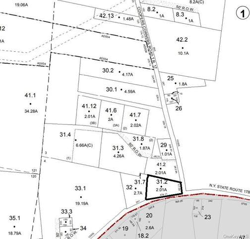 Coopers Corners Road, Monticello, NY 12701 (MLS #H6150712) :: Cronin & Company Real Estate