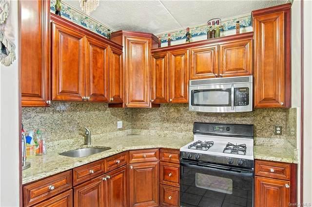 807 St Anns Avenue 19B, Bronx, NY 10456 (MLS #H6150754) :: Cronin & Company Real Estate