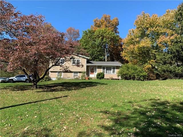 24 Twin Oaks Drive, Campbell Hall, NY 10916 (MLS #H6150879) :: Goldstar Premier Properties