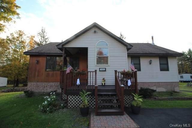 263 Katrina Falls Road, Rock Hill, NY 12775 (MLS #H6150898) :: Cronin & Company Real Estate