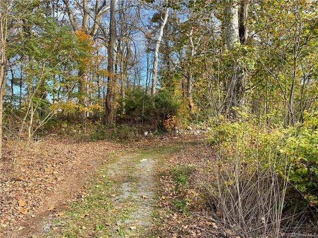 Canal Street, Wurtsboro, NY 12790 (MLS #H6150905) :: The SMP Team