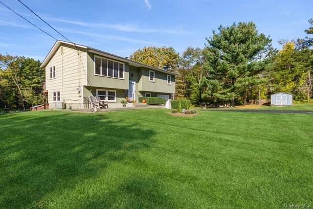 207 Charwill Drive, Clinton Corners, NY 12514 (MLS #H6150958) :: Cronin & Company Real Estate